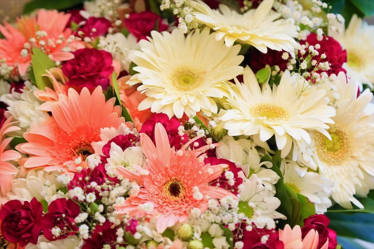 プレゼント・ギフトに最適なお花の定期便&サブスク4選を比較